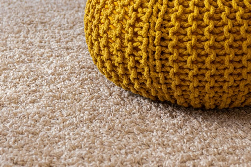 Try our carpet cleaning services in Carmel, IN!